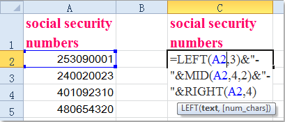 Add In Quickly Ssn Dashes To Excel How