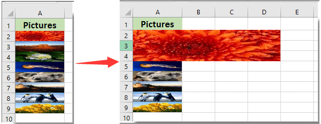 How to enlarge image when click on it in Excel?