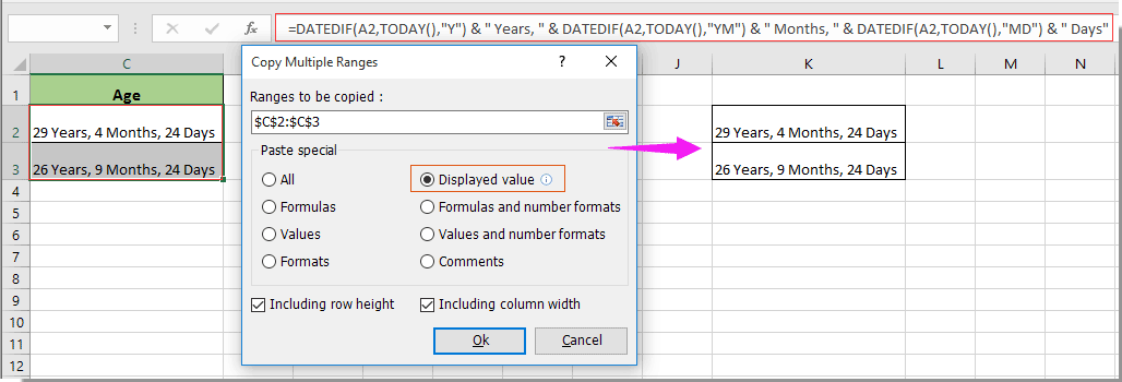 How to copy cell as text value not formula in Excel?