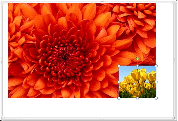 doc merge images 01