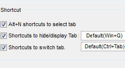 screenshot_workbook_tabs_shortcuts_250
