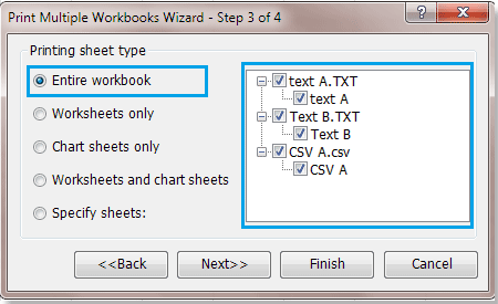 shot-print-multiple-workbook4
